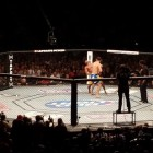 800px-Chris_Weidman_knock_out_Anderson_Silva_at_UFC_162.